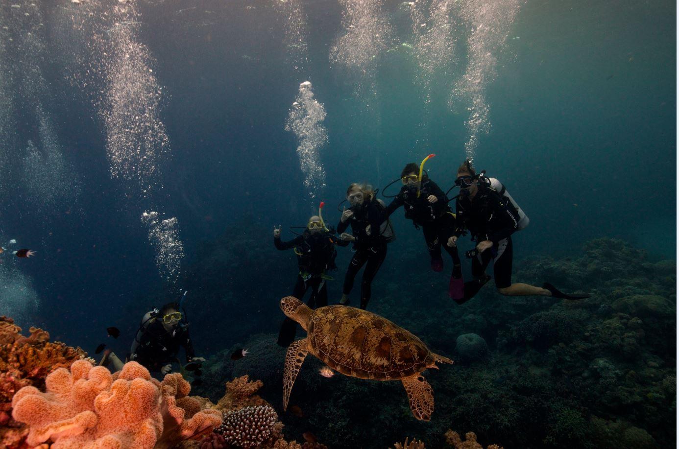resort scuba dive
