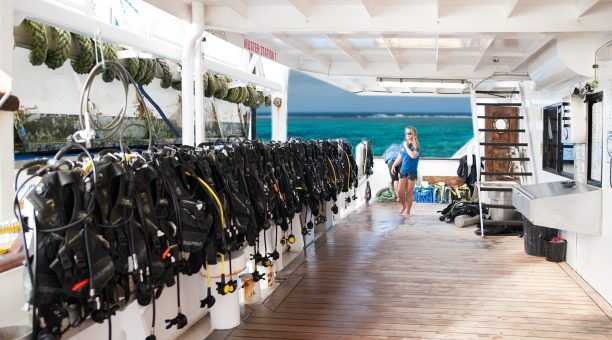 All equipment is carried on board. Upgrade to a dive at any time! No need to pre-book